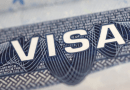 US visas for highly skilled foreign workers could fall by the wayside in 2021